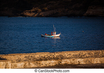 boat - small ship floating in a bay