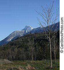 Majestic Peak - Mt. Cheam. Chilliwack BC