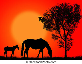 Horse pasture - Horse and colt pasturing against a colorful...