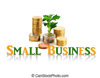 Small business concept. - Palnt and coins isolated over...