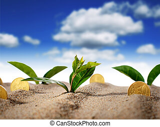 Plant and money - Plant and money in sand