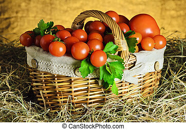 Tomatoes - Ripe Red Tomatoes In A Basket On Hay