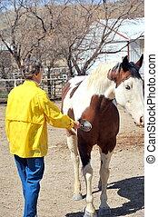 Female rancher - Female rancher brushing her horse outside