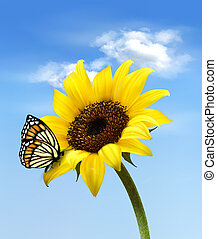 Background with sunflower field over cloudy blue sky Vector