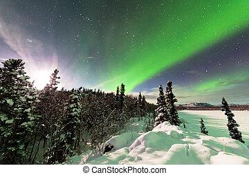 intenso, exhibición, norteño, luces, aurora, borealis