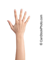 Woman hand showing the five fingers isolated on a white...