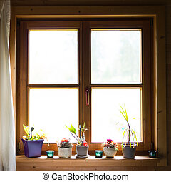wooden window with flowers on ledge