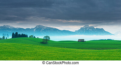 sunset panorama of spring meadow with mountains