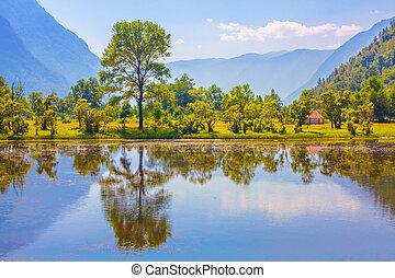 montagne, verde, paesaggio, natura