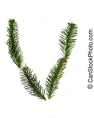 V - symbol from christmas alphabet - V - symbol from pine...