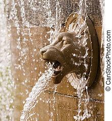 gargoyle - lion gargoyle spitting water