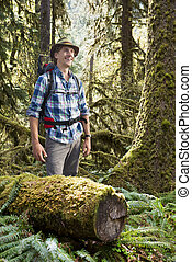 Hiker in temperate rainforest - Young Hiker, standing in a...