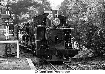 Puffing Billy Train - Puffing Billy steam trains comes to a...