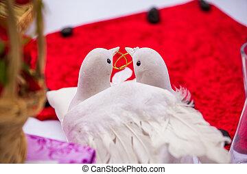 zwei, Tauben