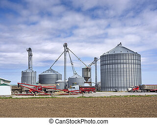 Grain silos - Agricultural grain elevator building for corn...