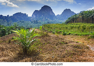 nature of the island of Thailand