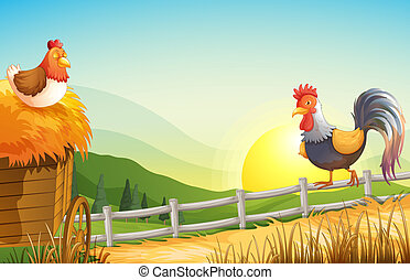 A hen and a rooster in the farm - Illustration of a hen and...