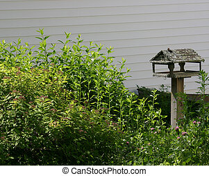 Old bird feeder in an overgrown garden