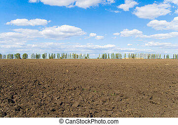 topsoil - rural view after harvesting on plough-land