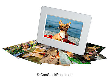 white digital photo frame with photos of a chihuahua...