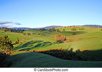 Rolling Green Fields at Sunrise