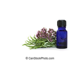 Rosemary and Marjoram Herbs - Rosemary herb leaves and...
