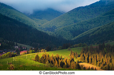 Spring cloudy morning in the Carpathian mountains