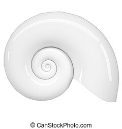 White spiral shell Isolated render on a white background