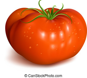 Red ripe tomato with waterdrops