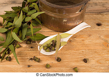 Eucalyptus in natural medicine - Eucalyptus leaves and seeds...