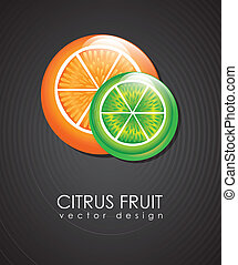 citrus fruit over black background vector illustration