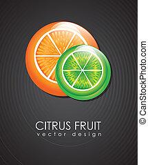 citrus fruit over black background vector illustration