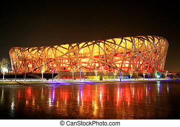 Bird nest at night