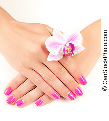 pink manicure with orchid flower. isolated - female hands...
