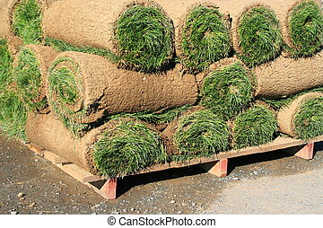 Rolls Of Sod - Close up of the rolls of sod.