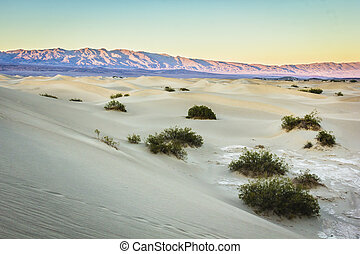 死, 山谷, 沙子, 沙丘