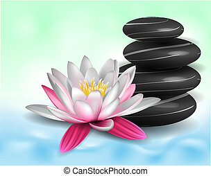 Water lily and zen stones