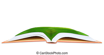 green grass field on open book use