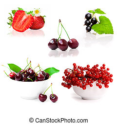 collage of pictures of berries