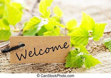 etiqueta, bienvenida
