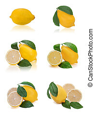 set of fresh lemon citrus with cut and green leaves isolated on white background