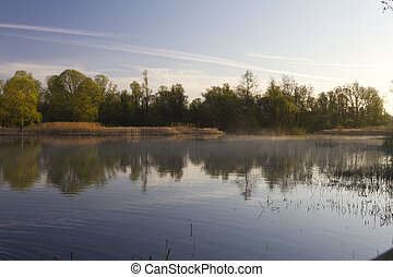 misty lake surrounded by forest