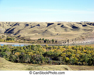 A oasis of cottownoods line the floodplains of the coulee...