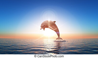 dolphin and horizon