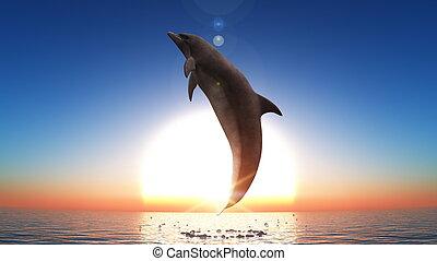 dolphin and horizon