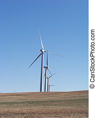 Windmills stand in a row on a field.