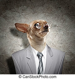 Funny portrait of a dog in a suit on an abstract background....