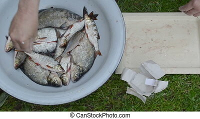 hands salting fresh fish - man hands salt freshly caught raw...