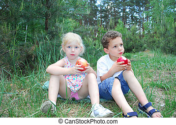 little boy and girl are eating apples - In the summer,...
