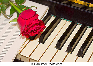 red rose with notes paper on piano - red rose with notes...